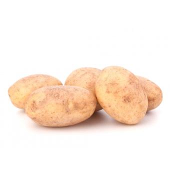 Pomme de terre tresor (10 Kg)
